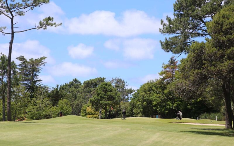 Se realizó la XXIV Copa Rincón Club de Golf